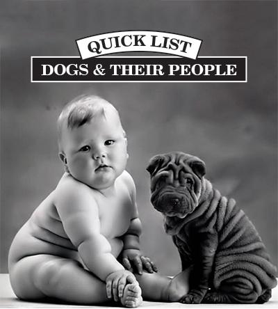 ql-dogs